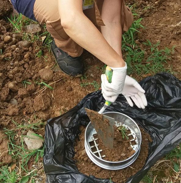 Campionamento terreni, terre e rocce da scavo 5